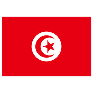 Plastimo Tunisia Courtesy Flag 45cm x 30cm