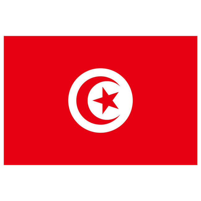 Tunisia Courtesy Flag 45cm x 30cm