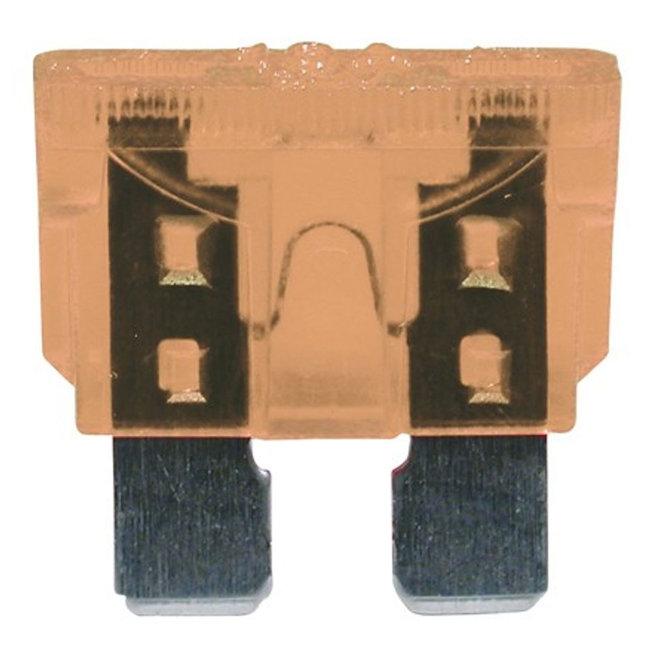 Blade Fuses 19mm (5 Pack)