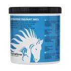 Pharmahorse Glucosamine 500gram