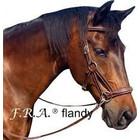F.R.A. FRA Flandy Bitloos Hoofdstel side pull Bruin