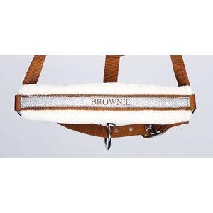 Harry's Horse Halster Lyrics Bruin Brownie