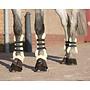 QHP 4069 QHP Peesberschermers clips Ontario bont Bruin