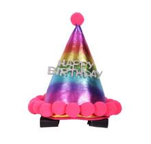 8454 Verjaardagshoedje Paard / Pony Regenboog