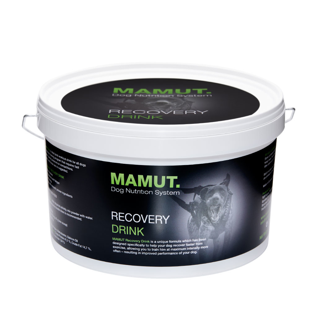Mamut Recovery Drink-1