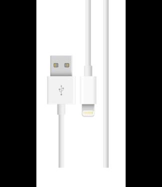 Apple Apple Lightning USB Kabel