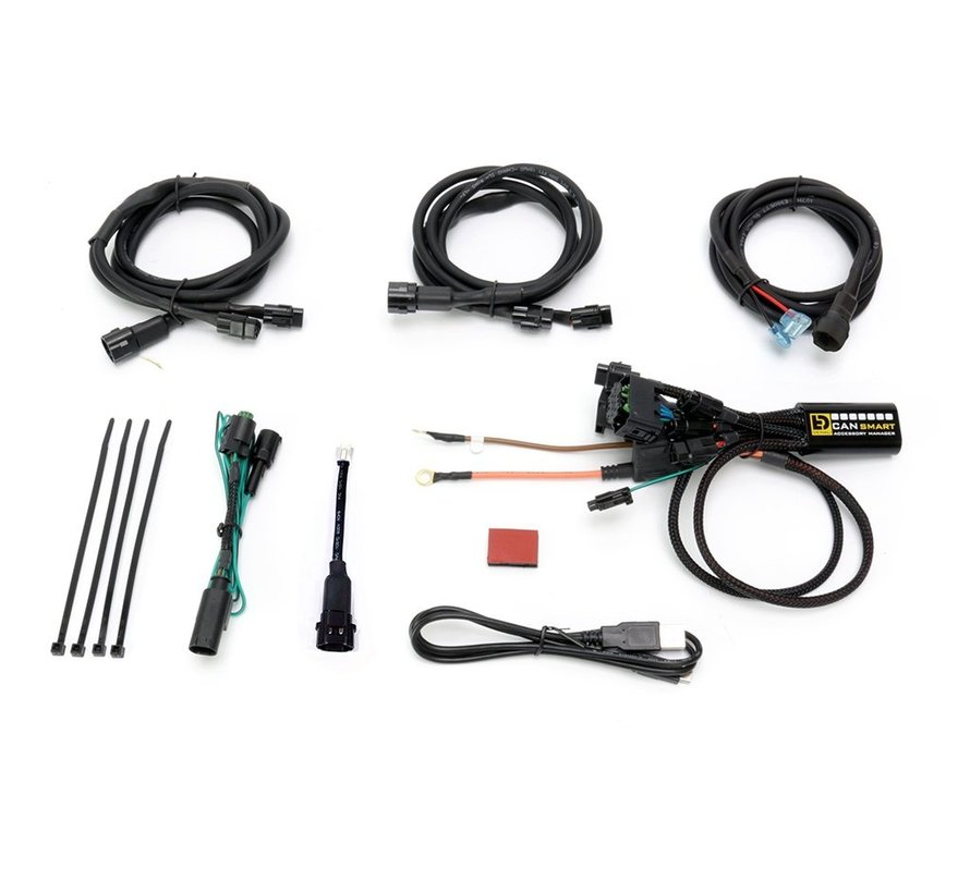Denali CANsmart™ Controller GEN I - BMW F800, F700, F650 series