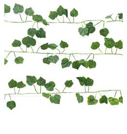 string lights - ivy
