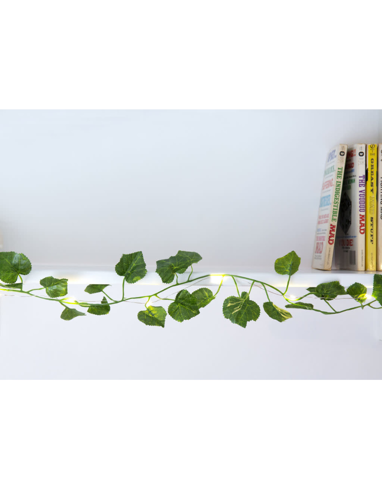 green string lights - ivy