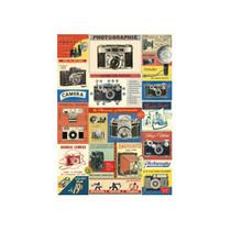 Cavallini decorative wrap - vintage cameras