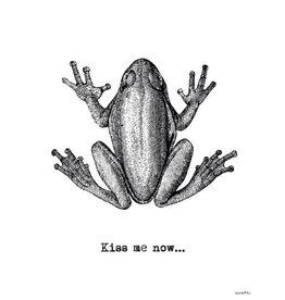 Vanilla Fly poster - frog