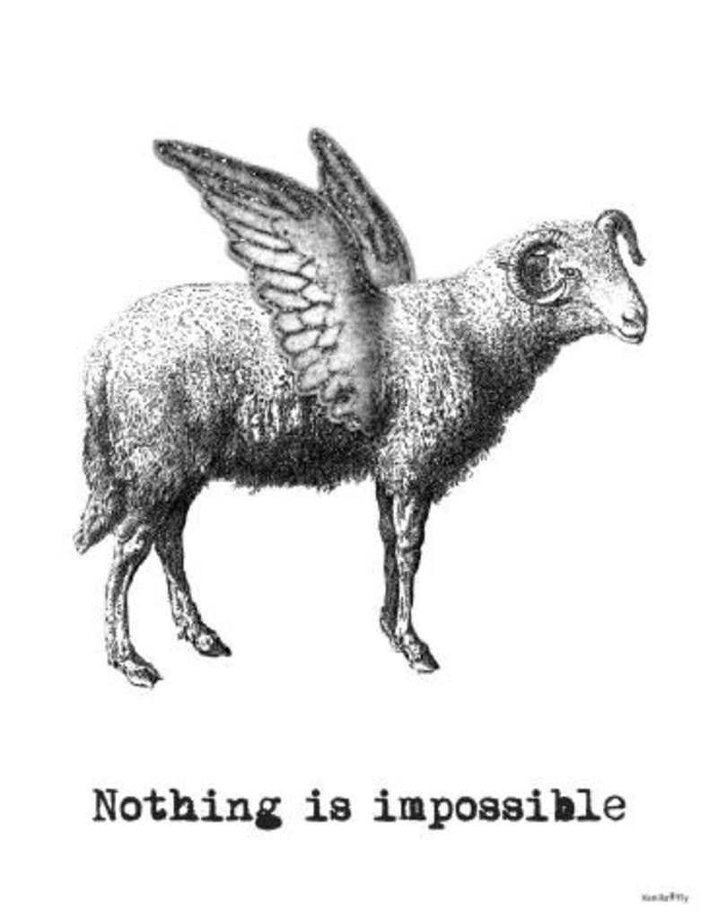 Vanilla Fly poster - nothing is impossible (goat)