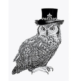 Vanilla Fly poster - owl with hat