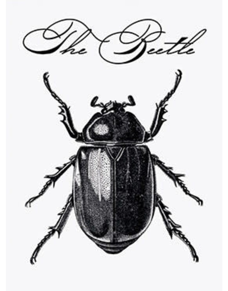 Vanilla Fly poster - the beetle