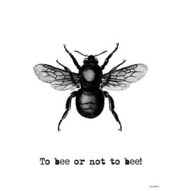 Vanilla Fly poster - to bee or not to bee