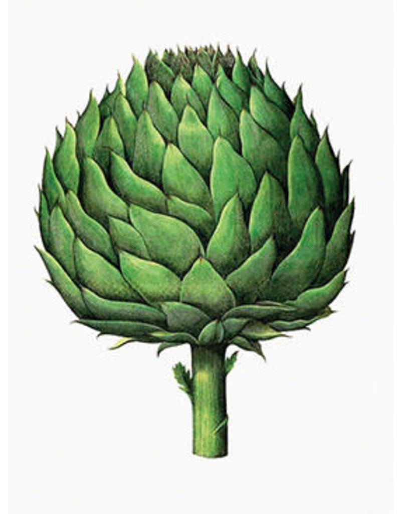 Vanilla Fly poster - artichoke