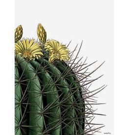 Vanilla Fly poster - cactus (geel)