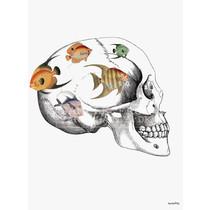 Vanilla Fly poster - crazy skull