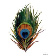 Vanilla Fly poster - veer pauw