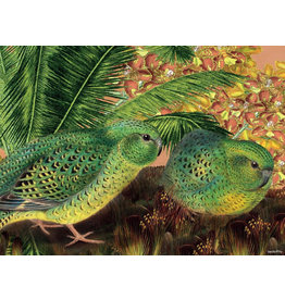 Vanilla Fly poster - papegaai
