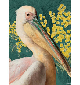 Vanilla Fly poster - pelican