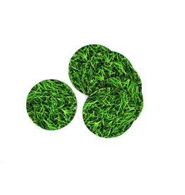Invotis coasters - grass