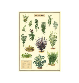 Cavallini decorative wrap - kitchen herbs