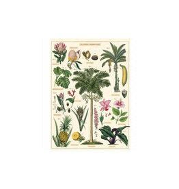 Cavallini decoratieve poster - tropische planten