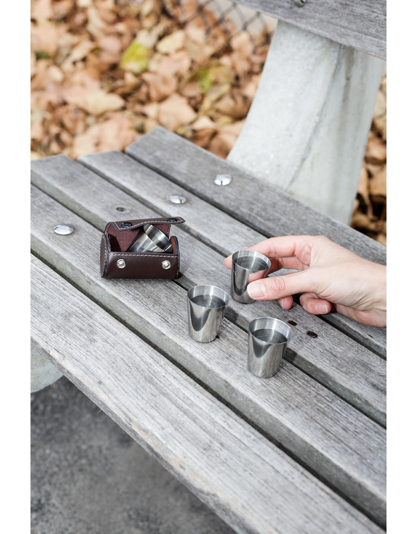 Kikkerland shot glasses - leather case