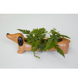 Kikkerland planter - Daisy the dachshund