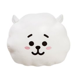 BT21 BT21 - cushion RJ