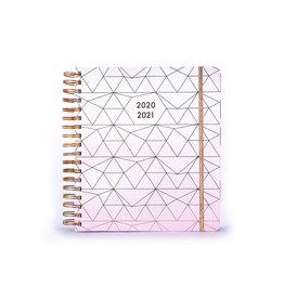 Tri Coastal diary 2020/21 - 18 mths large -  pink with golden lines