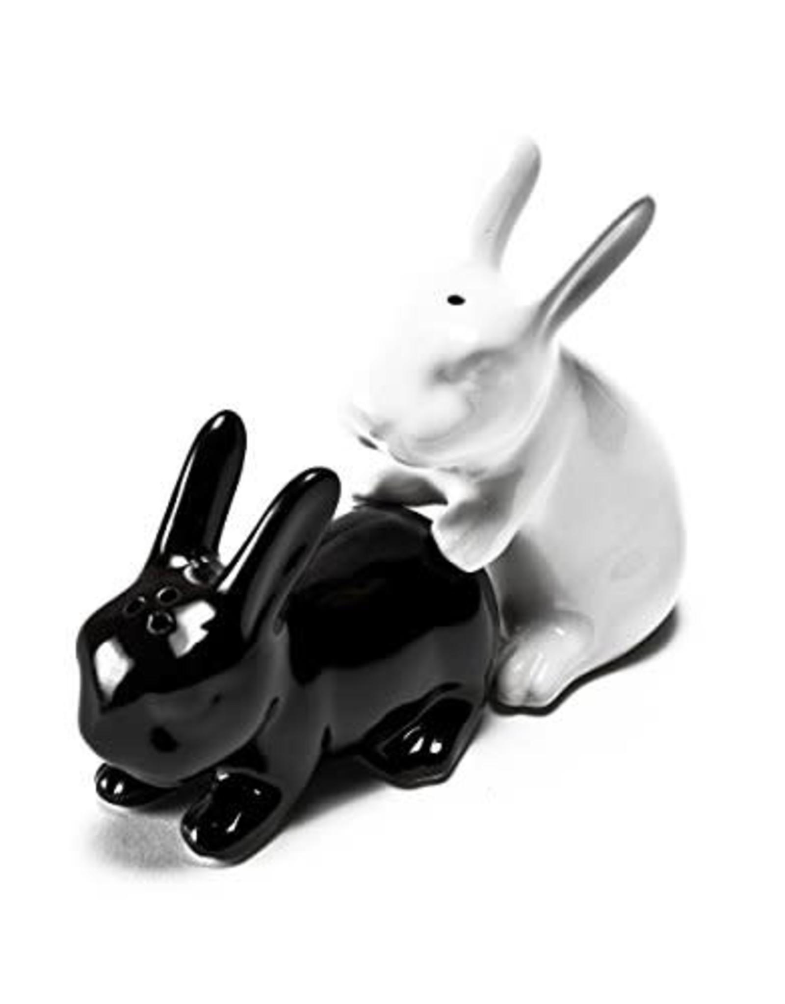 funny salt and pepper shaker - rabbits