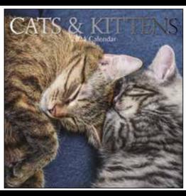 calendar 2021 - 30x30 - cats & kittens