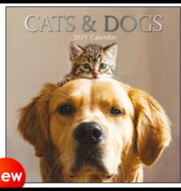 calendar 2021 - 30x30 - cats & dogs