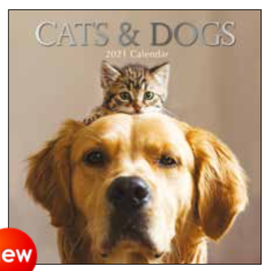 kalender 2021 - 30x30 - cats & dogs