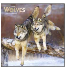 kalender 2021 - 30x30 - wolven
