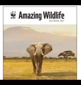 calendar 2021 - 30x30 - amazing wildlife