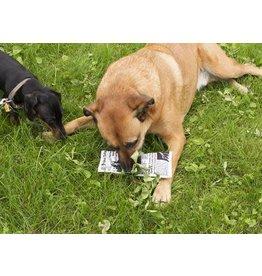Kikkerland hondenspeeltje - nieuws