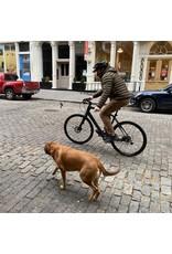 dog leash with bike clip