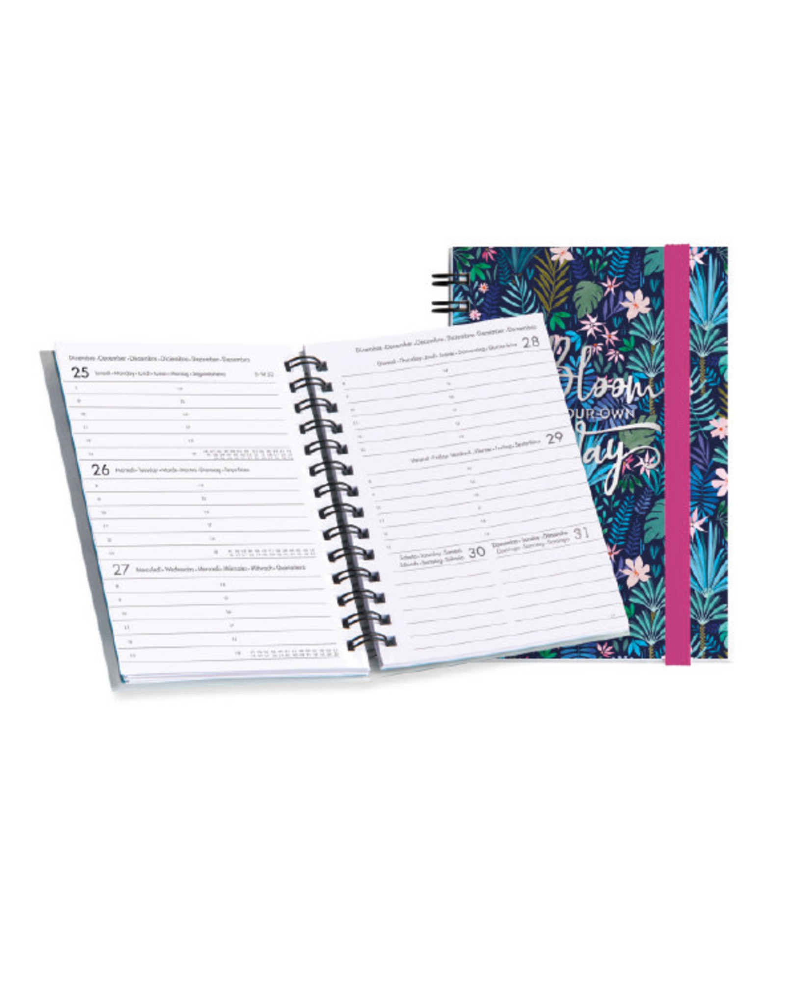 diary (12 months) with rings 'written in the stars'