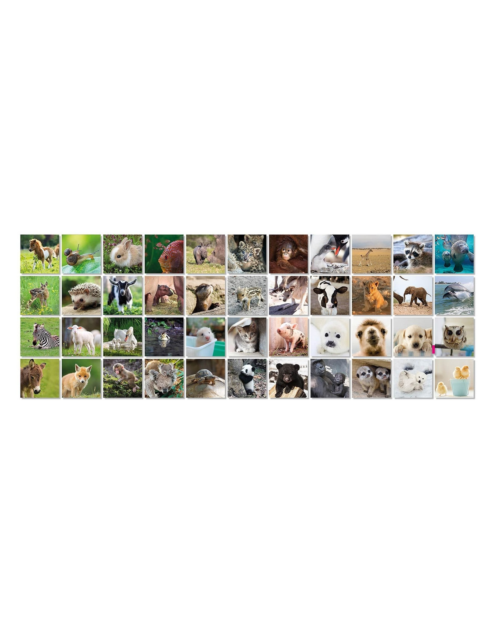 Remember memory game with pictures of  animal babies