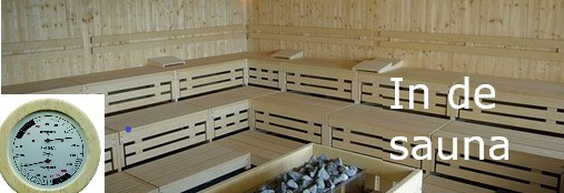 Hygrometer-shop.nl - Sauna