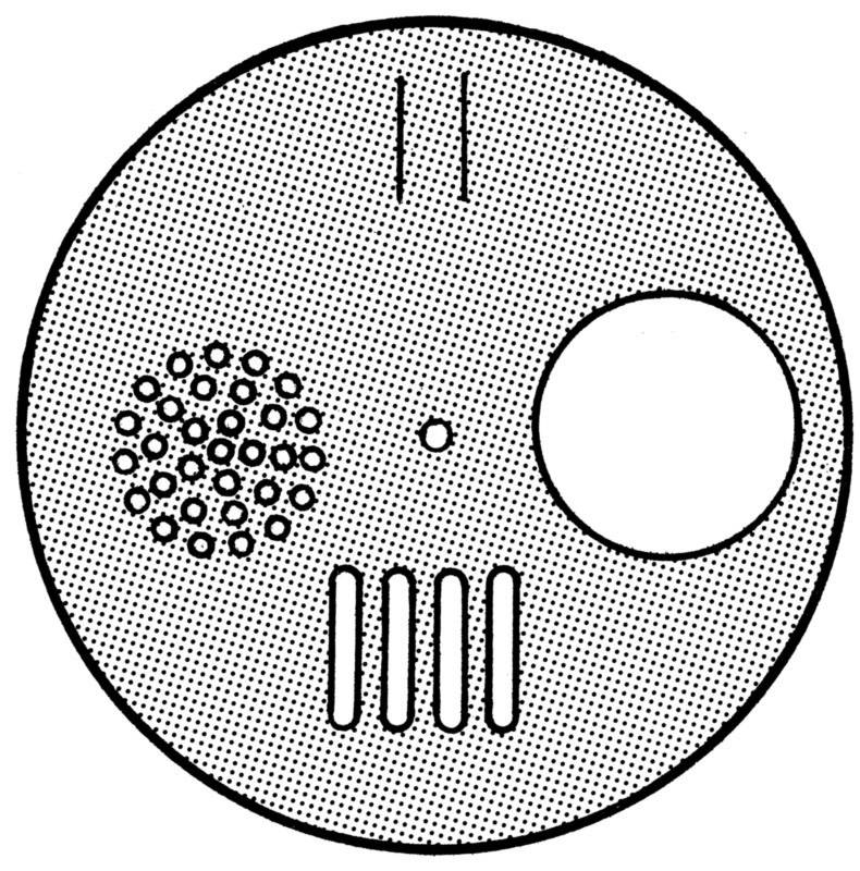 PVC draaischijf - groot-1