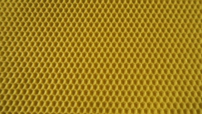 Bees wax waffle honeychambre Simplex - poured