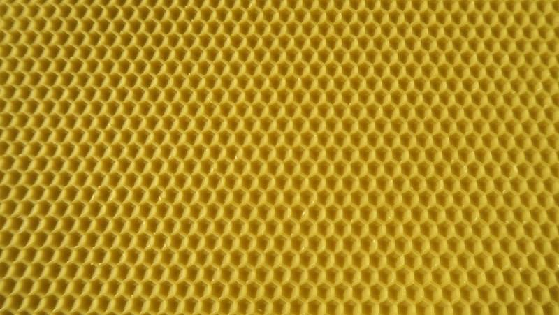 Dadant blatt wax waffle broodchambre