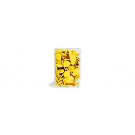 Punaises geel - 100 stuks