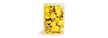 Punaises geel - 100 stuks-1