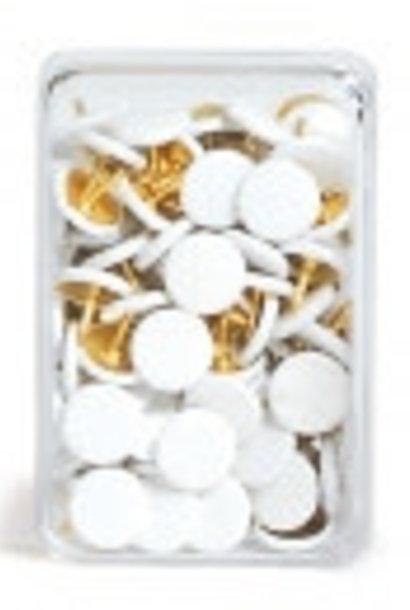 Punaises wit - 100 stuks