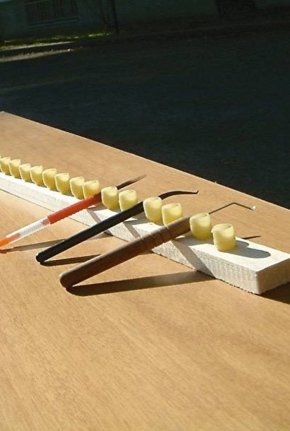 Grafting needle - inox
